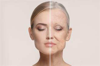 老化可以歸咎於粒線體的自由基滲漏?