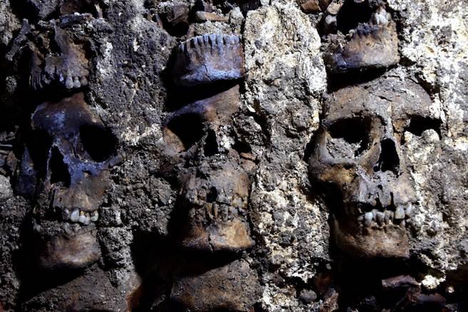 考古團隊近日又在阿茲特克骷髏塔的遺址中發現了119具頭骨,死者身分包含女人和幼童。(圖/路透社)