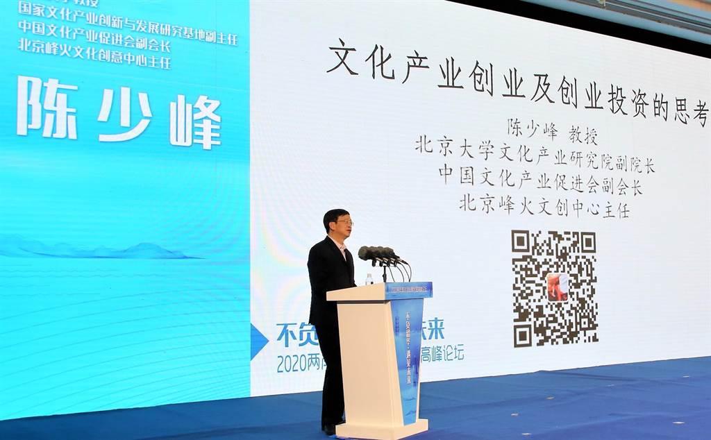 北京大学教授、国家文化产业创新与发展研究基地副主任、中国文化产业促进会副会长陈少峰针对如何在「十四五」规划开局之年抓住机遇的主题做出演讲。(记者陈思豪摄)