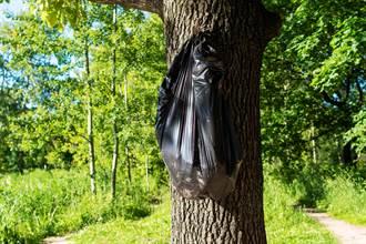 路樹高掛塑膠袋 地主打開崩潰:哪個缺德鬼