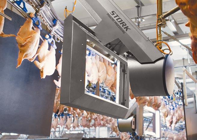 福寿气冷鸡全程採最新规格设备处理,使用RO纯水清洗,每一只鸡独立吊挂,并用双层关卡照相辨识系统,避免交叉污染。图/业者提供