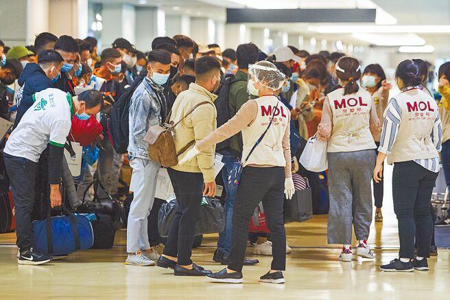 印尼移工提供的檢驗報告越來越不準確,18日起將持續全面暫緩引進。圖為自桃園機場入境移工。(本報資料照片)