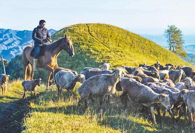 烏魯木齊牧民。(新華社資料照片)