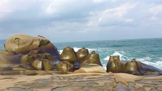 北海岸首例 野柳地質公園依文資法審議通過為自然地景