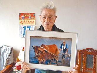 台南有老牛的家 雲林擬設安養所