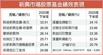 新興股票基金 H2平均漲20%