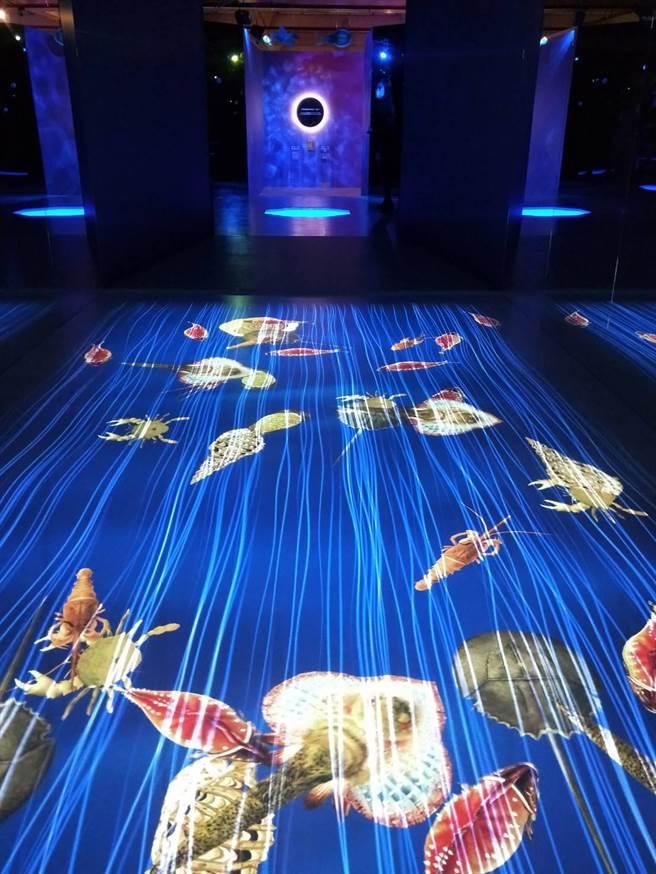 18公尺長奇幻水族世界,透過虛實整合方式與觀眾一起探索古代及現代海洋生物。(陳淑娥攝)