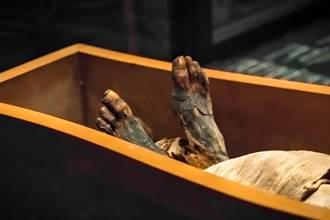 千年木乃伊憋1.2公斤大便慘死 生前還被餵食活蚱蜢