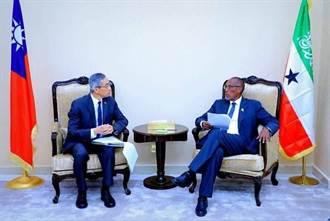 索國總統接見我代表 外交部:深化公衛醫療等合作
