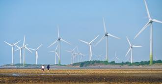 每度7.15元 台電明年採購風電超貴
