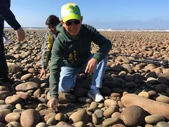 海瓜子簾蛤棲息地海砂驟減 吳敏濟會勘尋解套