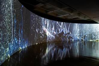 北美館台北雙年展攜手電商平台 零接觸線上逛展