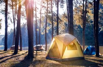 露营睡觉隔天惊见帐篷长满毛 凑近一看秒头皮发麻