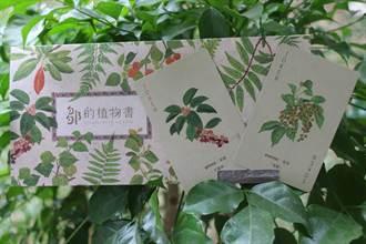 嘉義林管處「鄒的植物」撲克牌 周五4地同時開賣