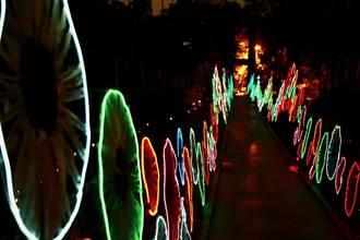 龙崎光节–空山祭耶诞登场 因应本土病例强化防疫
