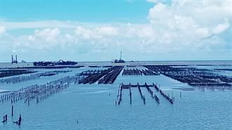 離岸風場再拓版圖 彰化外海明年啟動施工…