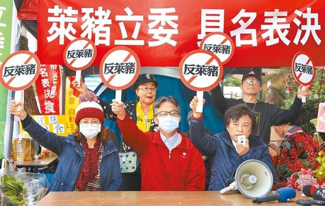 在立法院表决莱猪前,反莱猪医师苏伟硕(前排中)22日到立法院外声援静坐抗议的国民党前立委沈智慧(前排右)。(黄世麒摄)