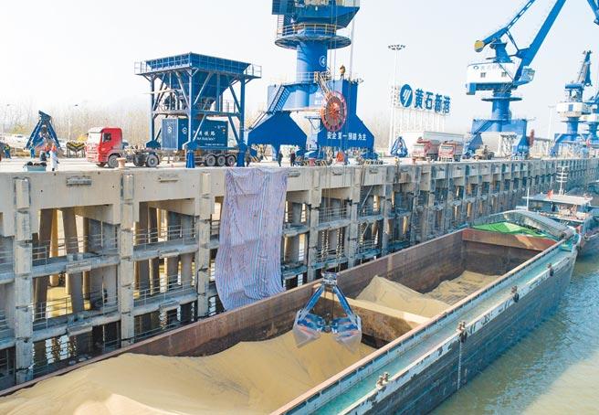 大陸今年前10月糧食進口總量,已超過去年全年。圖為烏拉圭進口的散裝大豆從船上轉運至貨櫃。(新華社)
