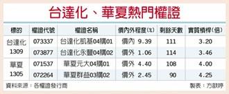台灣權王-供不應求 台達化華夏逆勢衝