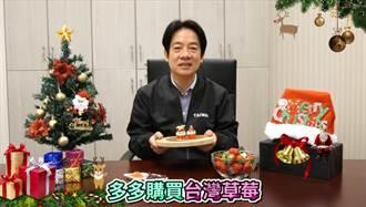 賴清德應景製作聖誕甜點 失手笑翻網友