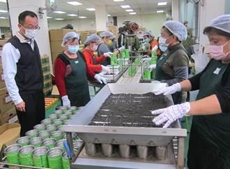鹿谷鄉冬茶比賽 劉武雄父子囊括第1、2名
