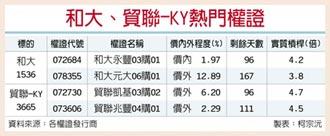 台湾权王-客户撑腰 和大、贸联狂喜