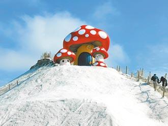 七股鹽山觀光新景點 許願蘑菇Good