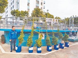 達能中山入選大陸國家級綠色工廠