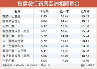 新興亞股基金 湧錢潮