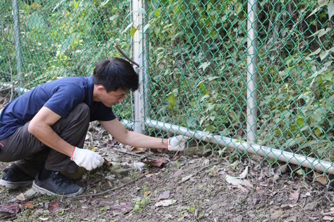 山貓森林在公館鄉北河村集資購地,保護生態棲地,並執行防路殺與獵殺圍籬環境整理,保護野生動物。(何冠嫻攝)