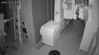 無業男連續偷竊女性內衣褲 辯稱:看到忍不住
