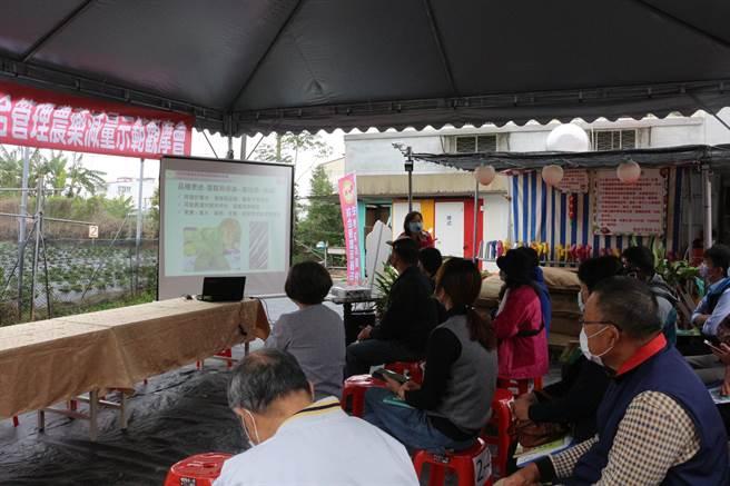 苗栗區農改場29日在楓和草莓園舉辦草莓IPM示範觀摩會。(巫靜婷攝)