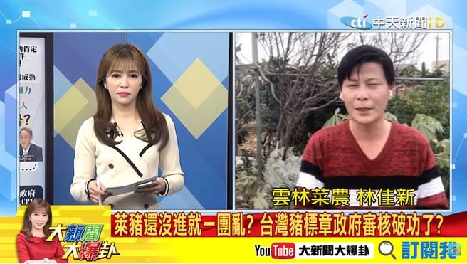 台湾猪标章审核破功?林佳新曝爆基层猪农心声。(中天新闻 节目画面)