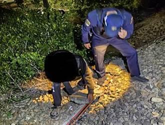 竹檢偵辦搞軌案 起訴羅男並從重求刑