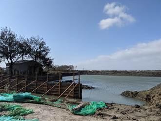 搶救家鄉養蚵產業 邱永仁花光積蓄打造養蚵生態池