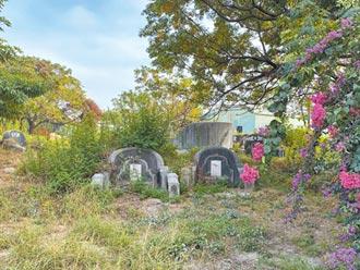 台南南山公墓文資調查 明年底公告