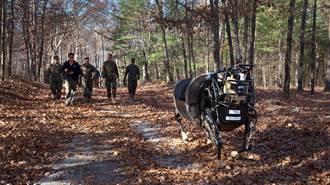 打造魔鬼終結者 美陸軍研發擁有正港肌肉的機器人