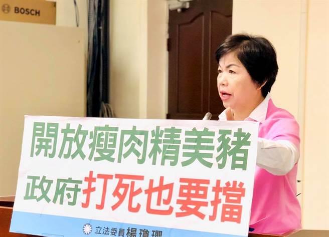 國民黨立委楊瓊瓔。(圖/摘自楊瓊瓔臉書)