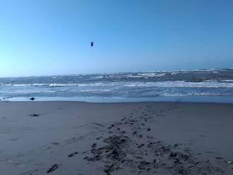 大安海水浴場風箏衝浪意外 男墜海後自行游上岸獲救