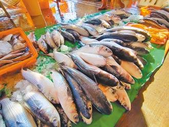 彰化烏魚慘量 漁民嘆年難過