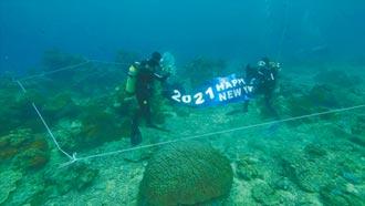 綠島潛水跨年 魚兒相伴倒數