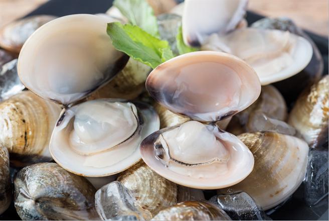 蛤蜊快速吐沙的妙招,有三大重點。(圖/灃食公益飲食文化教育基金會)