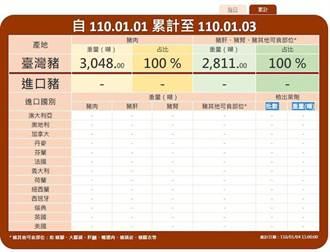 豬肉儀表板正式上線 每日更新進口量與查驗結果