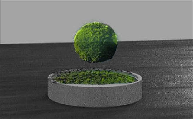 磁浮盆栽同時解決漏水與清潔上的麻煩。(聖約翰科技大學提供)