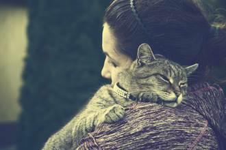 毛孩讀心術》加班回家悲見愛貓離世 寵物溝通牠1句埋怨惹鼻酸