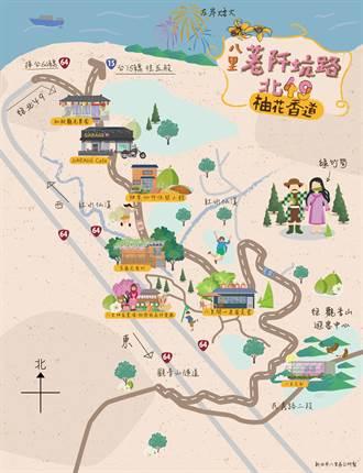 新北又一處秘境 八里區公所推出卡哇伊手繪「柚花香道地圖」