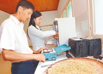 遨遊月球23天 水稻種子發芽了