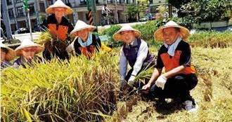 機耕協會強逼農友樂捐 農糧署辯只有雲林卻自打臉