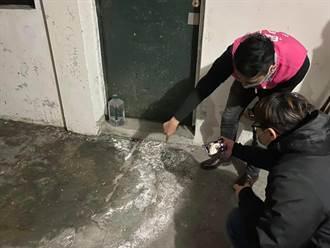 基隆男子租地下室發酵蒜頭實驗 惡臭撲鼻住戶誤在「製毒」