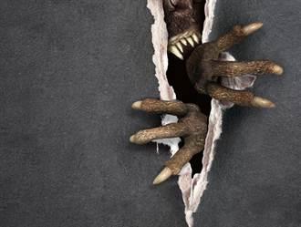 天花板突裂大洞 一抬頭驚見怪獸毛掌伸出利爪秒嚇壞